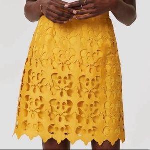 Loft Gold LaceCutOut Overlay Mini Skirt - 4